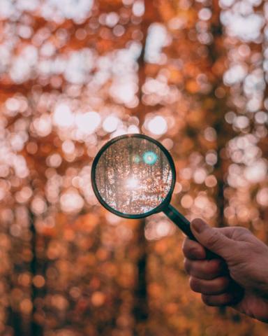 Corporate sustainability disclosure: keep it simple, make it useful
