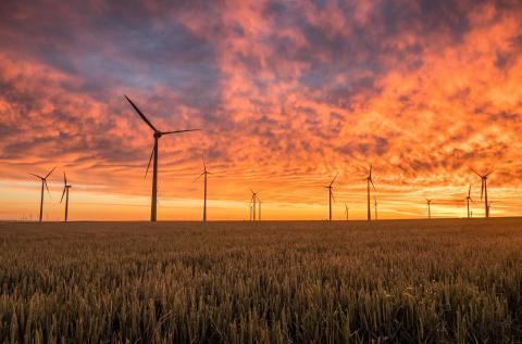 Akuo et Mirova mettent en service trois centrales éoliennes en Pologne